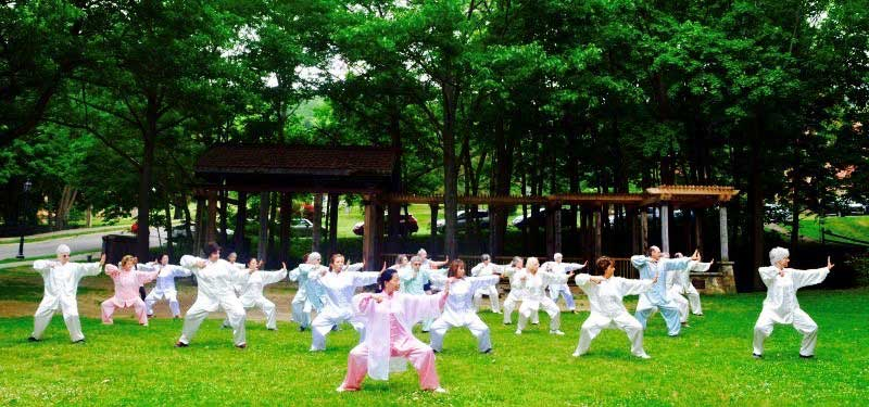 Alfred Tai Chi class practicing at the Village Bandstand